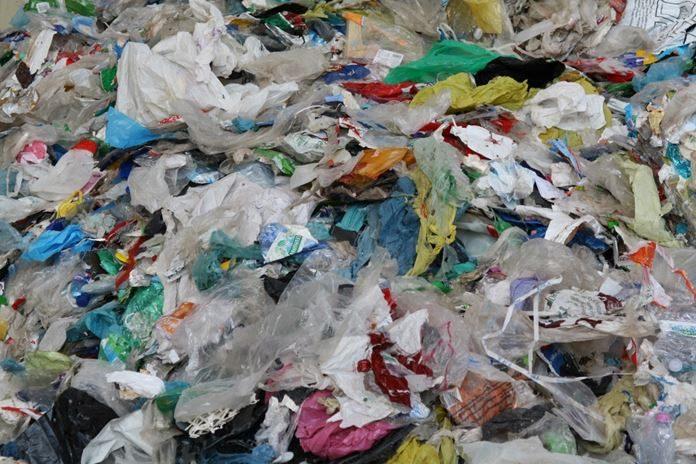 Pros y contras de no usar bolsa de plástico